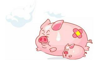 快速检测非洲猪瘟解决方案
